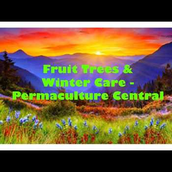 Fruit Trees Winter Care Central