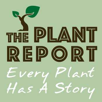 The Plant Report podcast